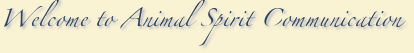 Welcome to Animal Spirit Communication